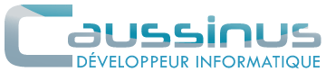 Caussinus Developper Informatique